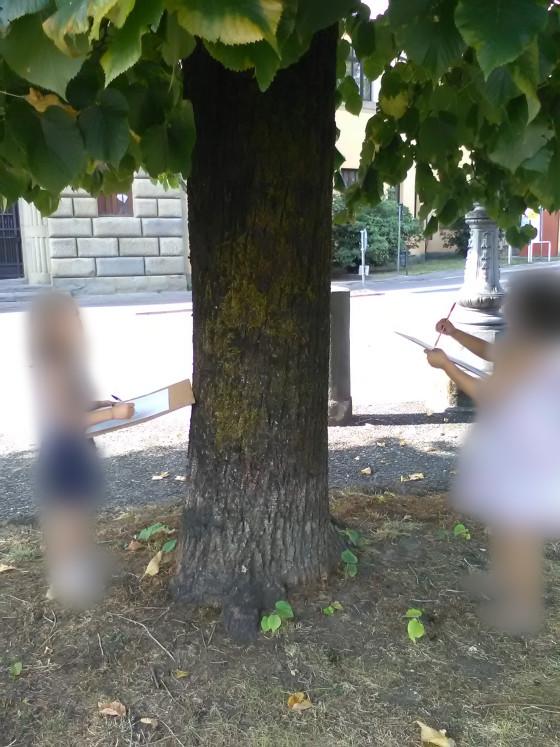 Sotto l'albero a disegnare